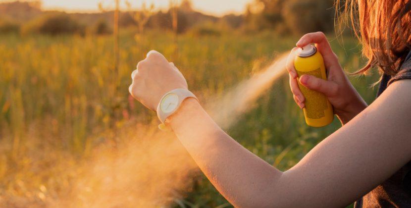 Naturalne sposoby na kleszcze – jak się chronić?